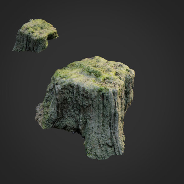 3d scanned nature tree stump 009 - 3DOcean Item for Sale
