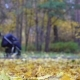 Concept Family Walking with a Baby in a Stroller in Autumn Park Forest. Happy Father Walks with the