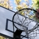 Basketball Enters the Basket Outdoors