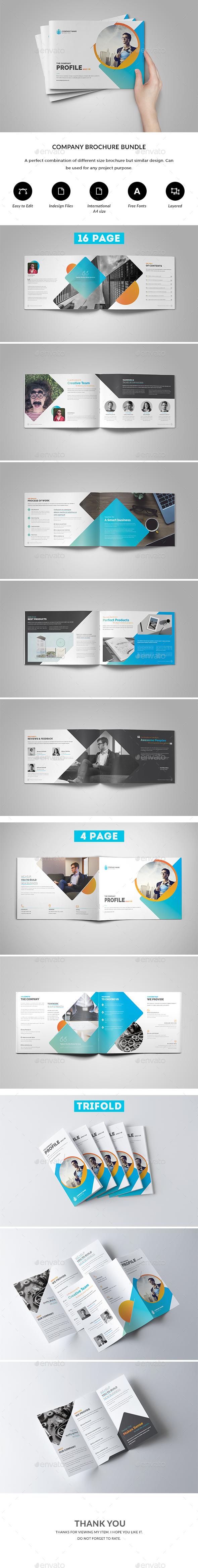 GraphicRiver Company Brochure Bundle 20892427