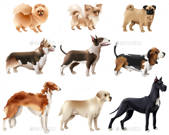 Dog Breeds Icon Set - Animals Characters