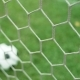 View of Soccer Ball Through Goal Net on Green Grass Field - VideoHive Item for Sale