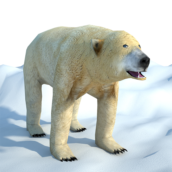 3DOcean Low Poly Polar Bear 20895791