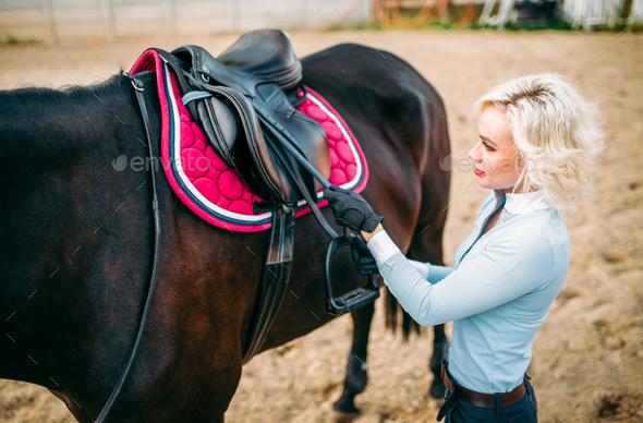Female rider preparing a horse saddle, - Stock Photo - Images