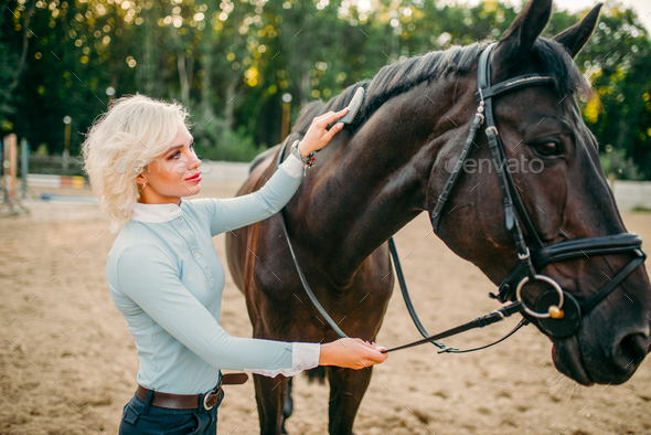 Young woman combing the mane of the horse - Stock Photo - Images