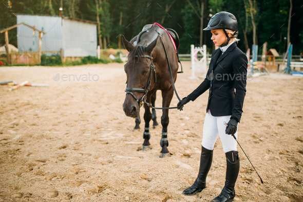 Equestrian sport, woman in helmet and horse - Stock Photo - Images
