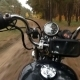 Motorcycle Chopper Puts on a Forest Road - VideoHive Item for Sale