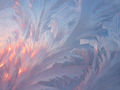 Ice and sunlight winter texture - PhotoDune Item for Sale
