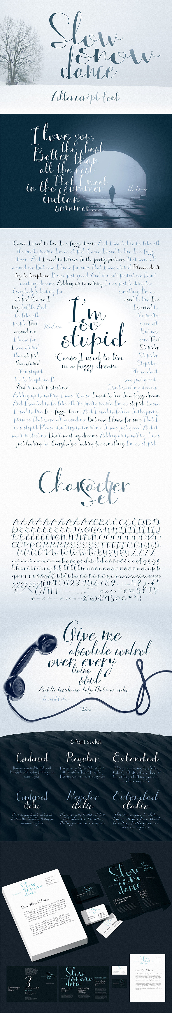GraphicRiver Hight Contrasting Hand Font Alterscript 20897108
