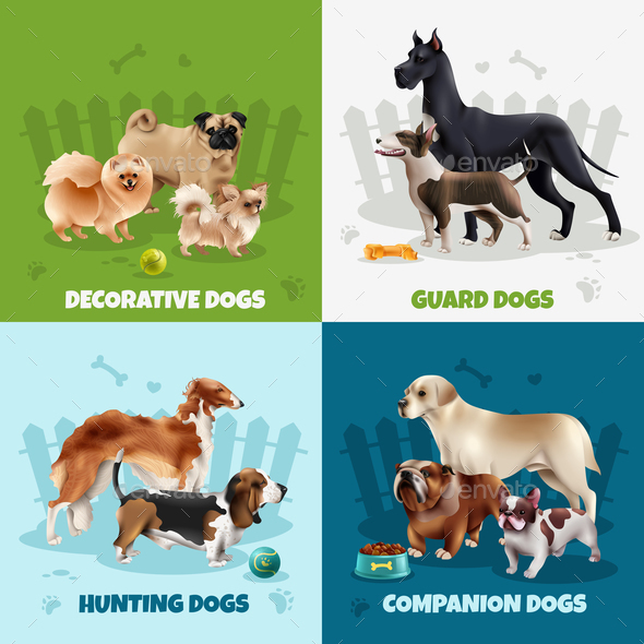 Dog Breeds Design Concept - Animals Characters