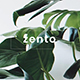 Zento Creative Powerpoint Template