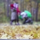 Concept Family Walking with a Baby in a Stroller in Autumn Park Forest. Happy Father Walks with the - VideoHive Item for Sale