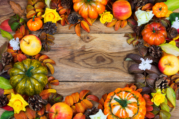 Border of pumpkins, apples, pine cones, fall leaves, yellow rose - Stock Photo - Images