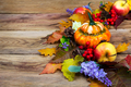 Fall pumpkin, colorful leaves, lilac flowers door wreath, copy s