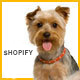 Animer - Pet Sitter, Pet Shop, Animal Care Shopify Theme