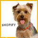 Animer - Pet Sitter, Pet Shop, Animal Care Shopify Theme - ThemeForest Item for Sale