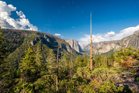 Yosemite National Park Valley summer landscape - Stock Photo - Images