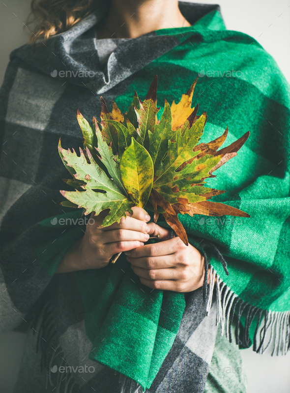 Woman in check scarf or blanket with Autumn leaves - Stock Photo - Images