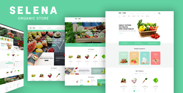 Selena - Organic Food Store Theme for WooCommerce WordPress