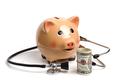 Health Care Piggy - PhotoDune Item for Sale