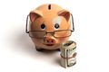 Isolated Piggy Bank With Glasses - PhotoDune Item for Sale