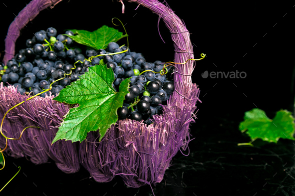 Red wine grapes in voiolet basket on bllack background. - Stock Photo - Images