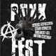 Punk Rock Festival or Concert Flyer