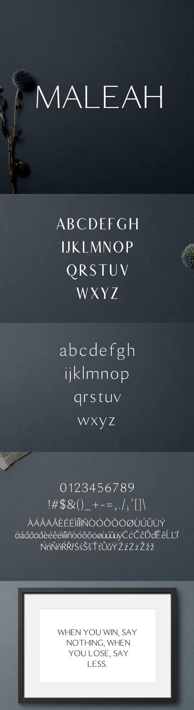 Maleah Sans Serif 2 Font Family Pack - Sans-Serif Fonts
