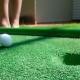 Mini Golf Scene