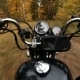 Rider on a Chopper Driving on the Autumn Forest - VideoHive Item for Sale