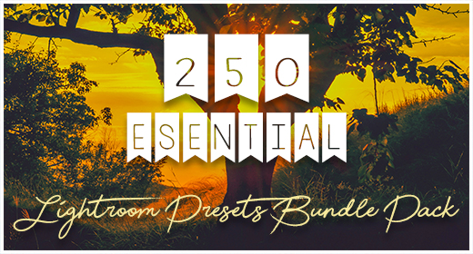 250 Essential Lightroom Presets Bundle Pack