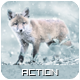 Snowy 2 Photoshop Action - GraphicRiver Item for Sale