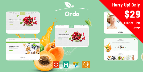 ThemeForest Ordo Organic Responsive WooCommerce WordPress Theme 20281431