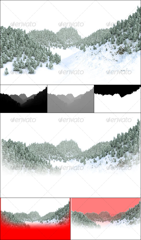 Winter Forest - Nature Backgrounds