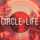 Circle Of Life - VideoHive Item for Sale
