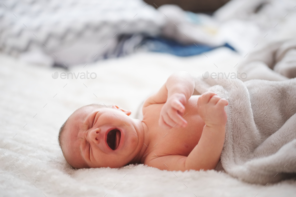 cute newborn baby at home - Stock Photo - Images