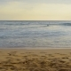 Surfers in the Ocean - VideoHive Item for Sale