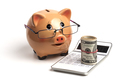 Piggy Bank and White Calculator - PhotoDune Item for Sale