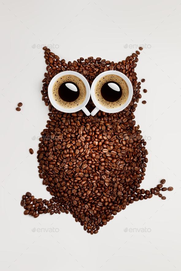 Coffee owl. - Stock Photo - Images
