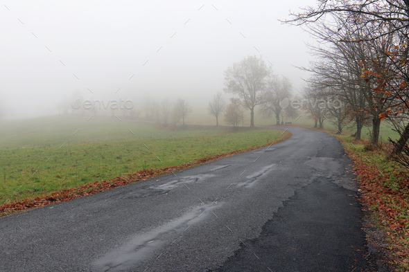 Empty Road in Misty Day - Stock Photo - Images