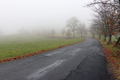 Empty Road in Misty Day - PhotoDune Item for Sale