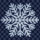 Snow Flake PNG Set