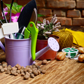 Gardening tools of shovel rake labels and watering can on wooden - PhotoDune Item for Sale