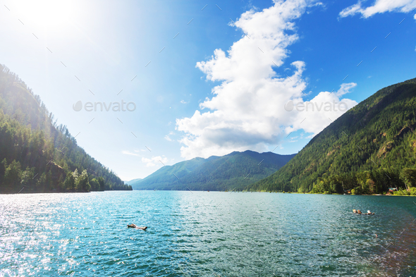 Crescent lake - Stock Photo - Images