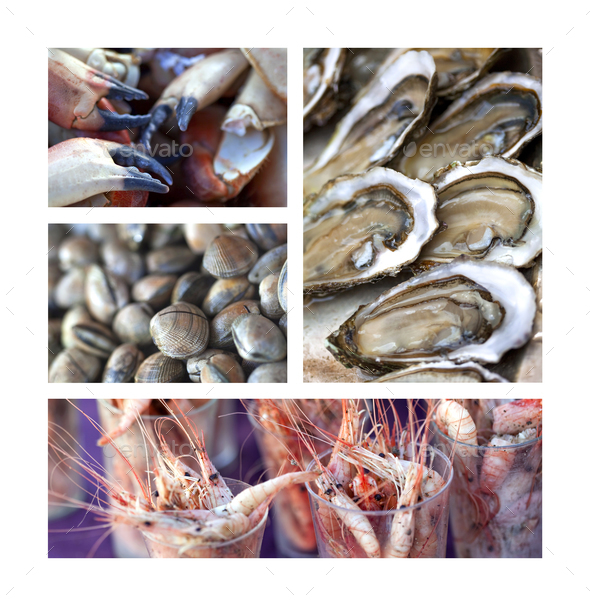 Crustaceans on a collage - Stock Photo - Images