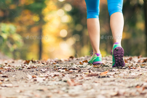 Woman walking and hiking in autumn forest - Stock Photo - Images