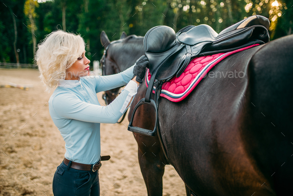 Female rider preparing a horse saddle, - Stock Photo - Images