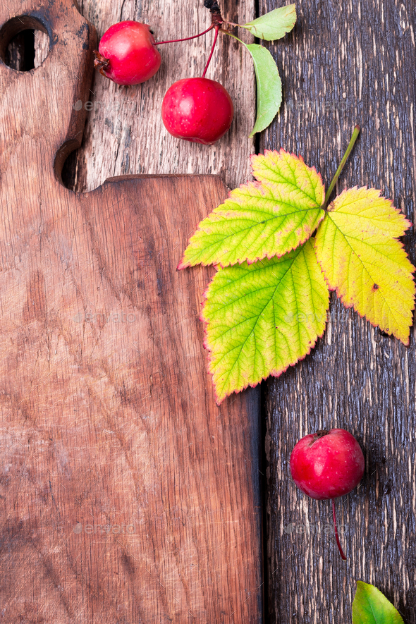 Leaves and small apple around empty cutting board  - Stock Photo - Images