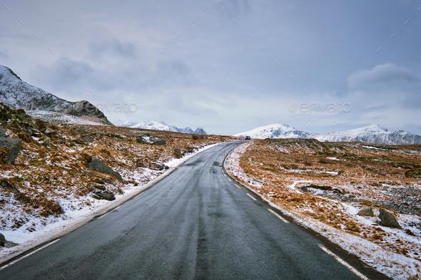 Road in Norway on Lofoten islands - Stock Photo - Images
