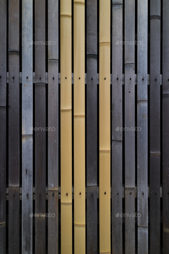 Old and fresh bamboo used for a barrier - Stock Photo - Images